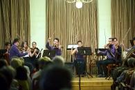 Hét éves az Anima Musicae Kamarazenekar